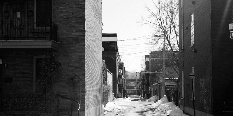 snowy alley between buildings with leafless tree